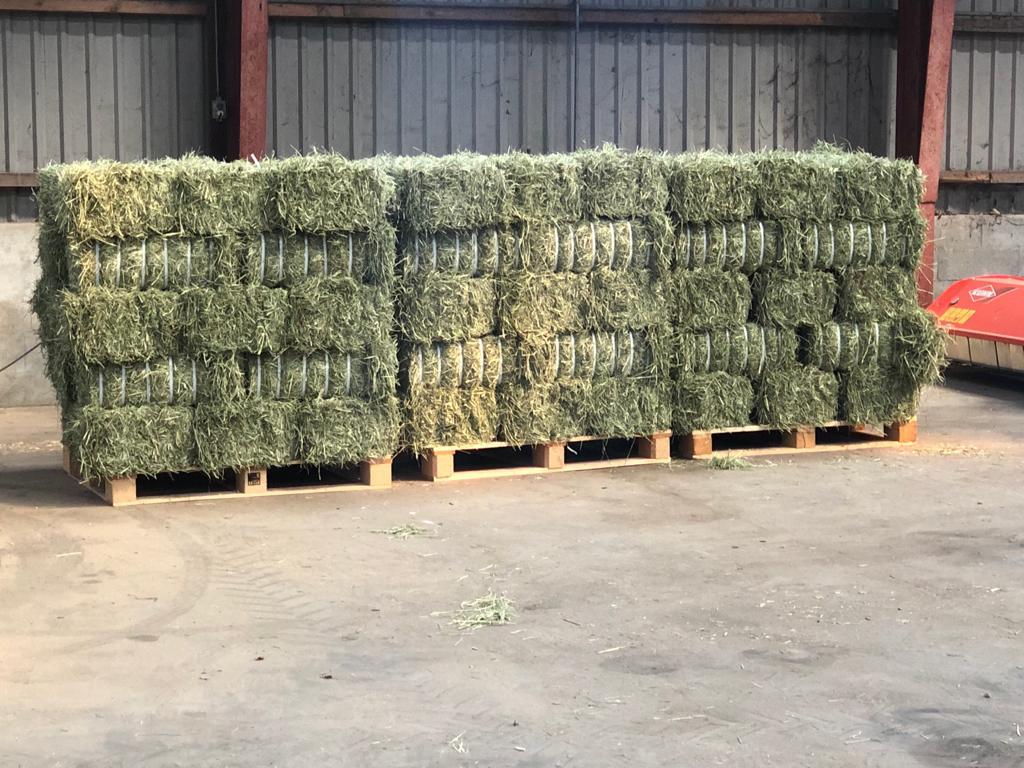 rebaled bales of strapped hay 20kg